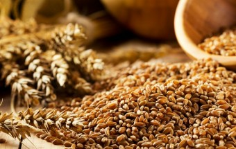 Whole-Grains2.800.370